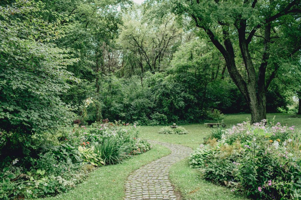 paver pathway through a lush green garden surrounded by green woods